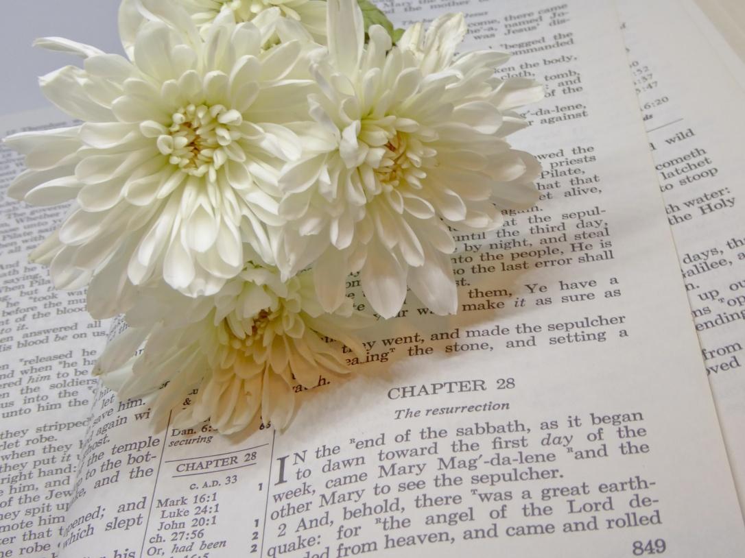 Easter morning Bible Scripture